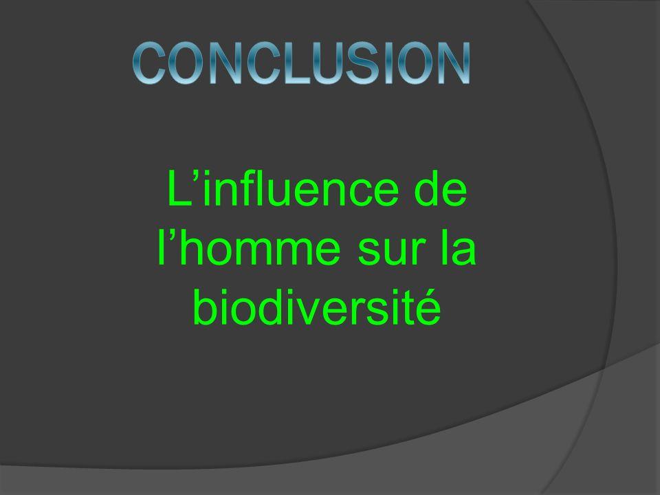 Linfluence de lhomme sur la biodiversité