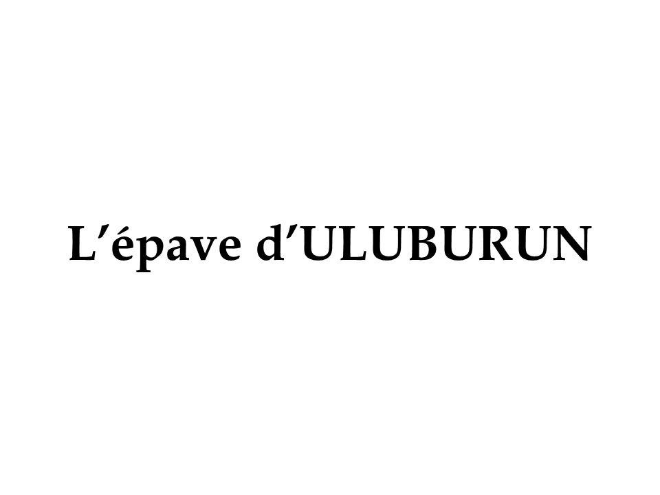 Lépave dULUBURUN