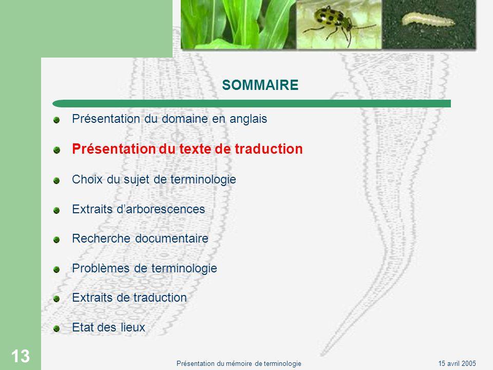 15 avril 2005Présentation du mémoire de terminologie 13 SOMMAIRE Présentation du domaine en anglais Présentation du texte de traduction Choix du sujet