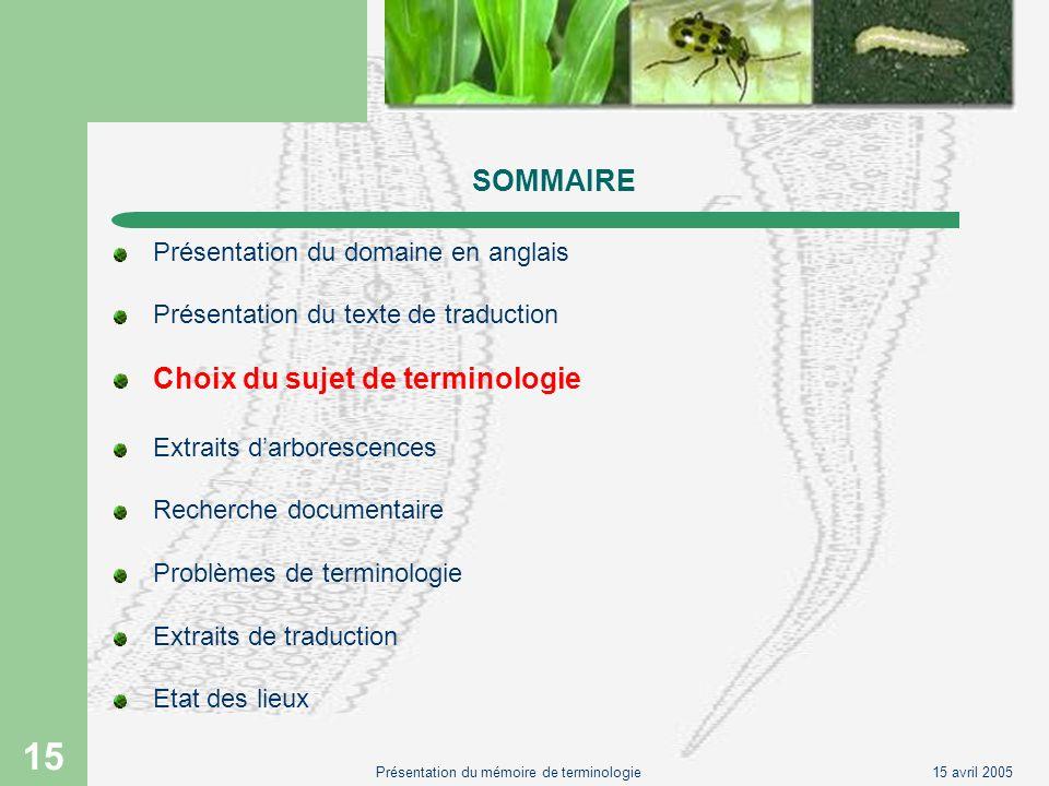 15 avril 2005Présentation du mémoire de terminologie 15 SOMMAIRE Présentation du domaine en anglais Présentation du texte de traduction Choix du sujet