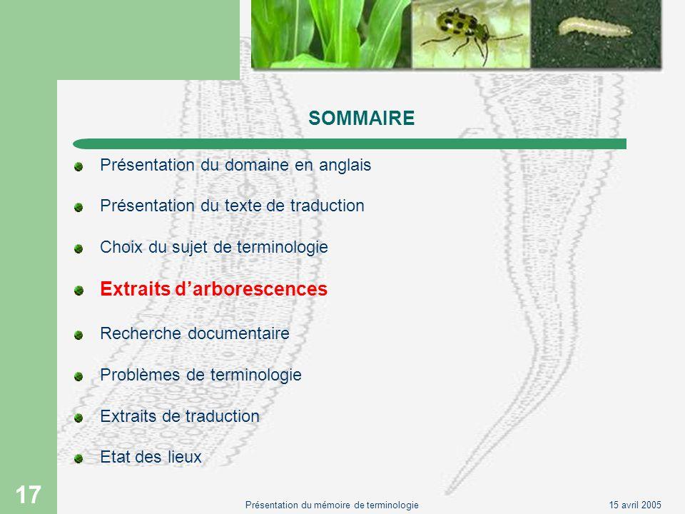 15 avril 2005Présentation du mémoire de terminologie 17 SOMMAIRE Présentation du domaine en anglais Présentation du texte de traduction Choix du sujet