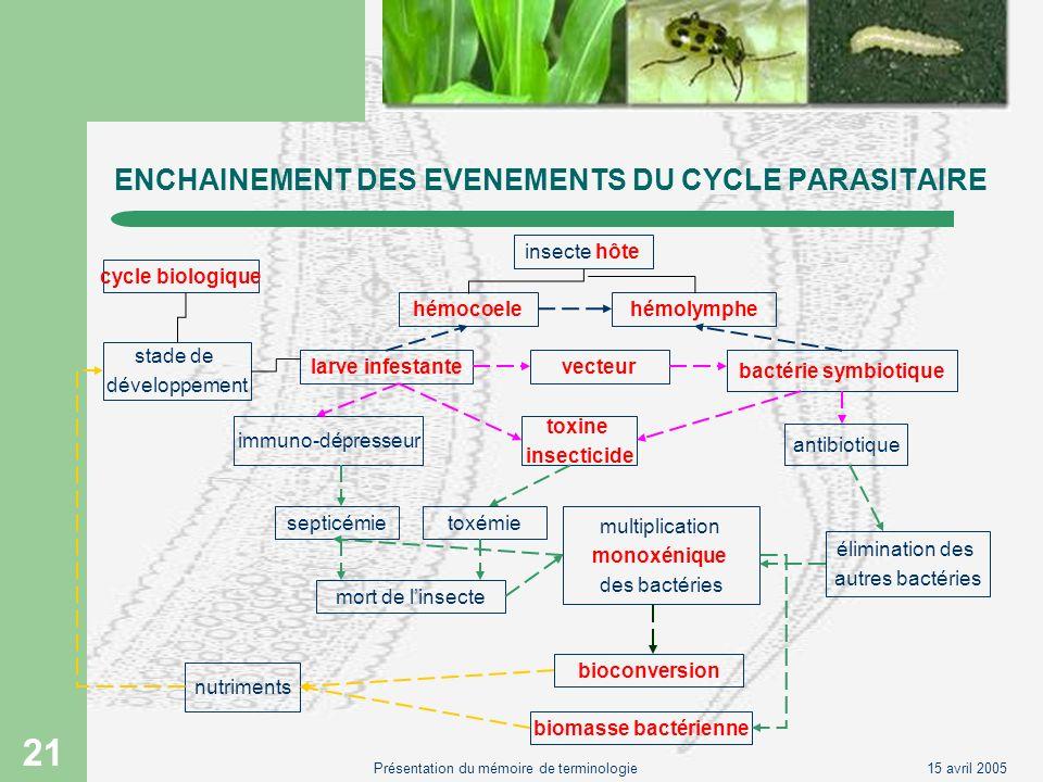 15 avril 2005Présentation du mémoire de terminologie 21 ENCHAINEMENT DES EVENEMENTS DU CYCLE PARASITAIRE cycle biologique stade de développement larve