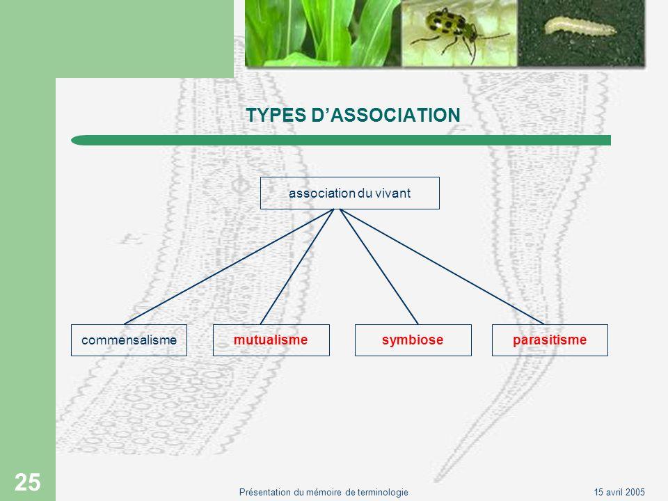 15 avril 2005Présentation du mémoire de terminologie 25 TYPES DASSOCIATION association du vivant commensalismemutualismesymbioseparasitisme