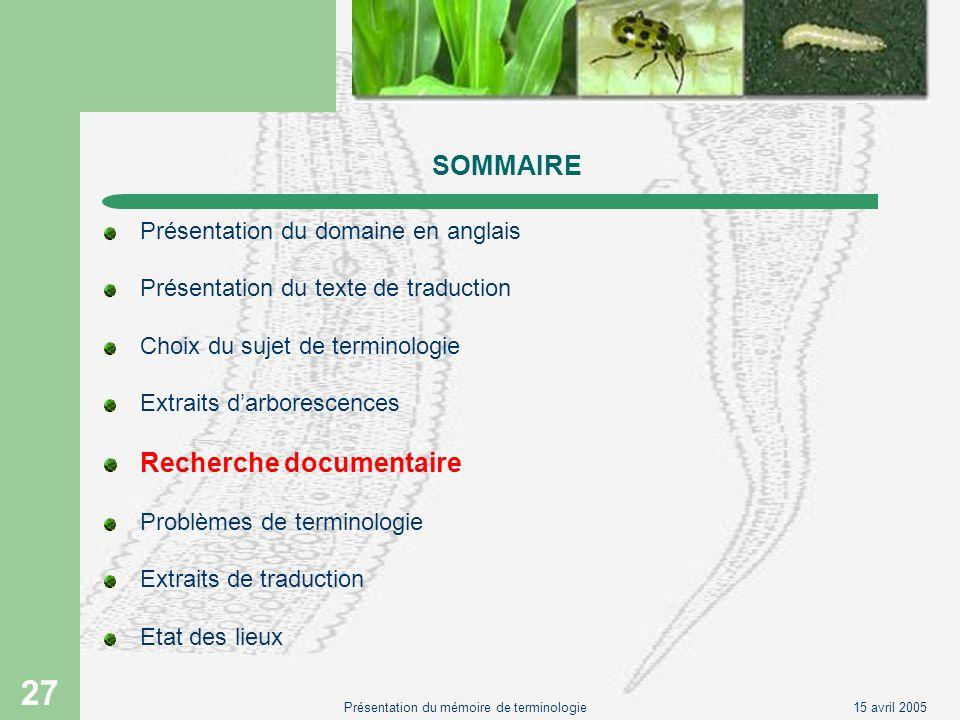 15 avril 2005Présentation du mémoire de terminologie 27 SOMMAIRE Présentation du domaine en anglais Présentation du texte de traduction Choix du sujet