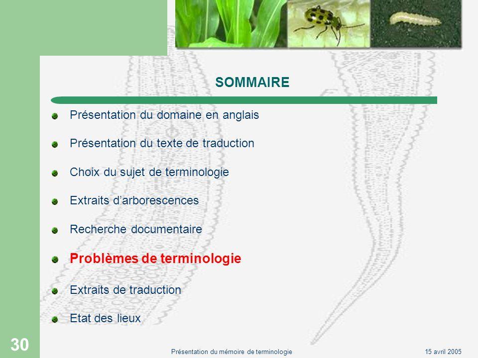 15 avril 2005Présentation du mémoire de terminologie 30 SOMMAIRE Présentation du domaine en anglais Présentation du texte de traduction Choix du sujet