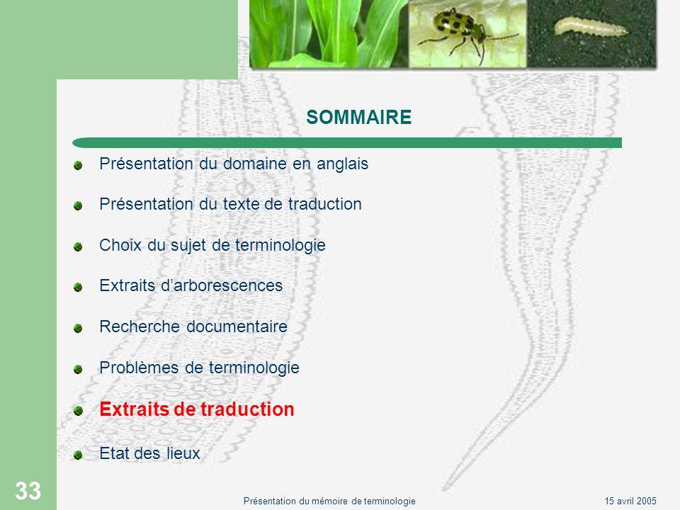 15 avril 2005Présentation du mémoire de terminologie 33 SOMMAIRE Présentation du domaine en anglais Présentation du texte de traduction Choix du sujet