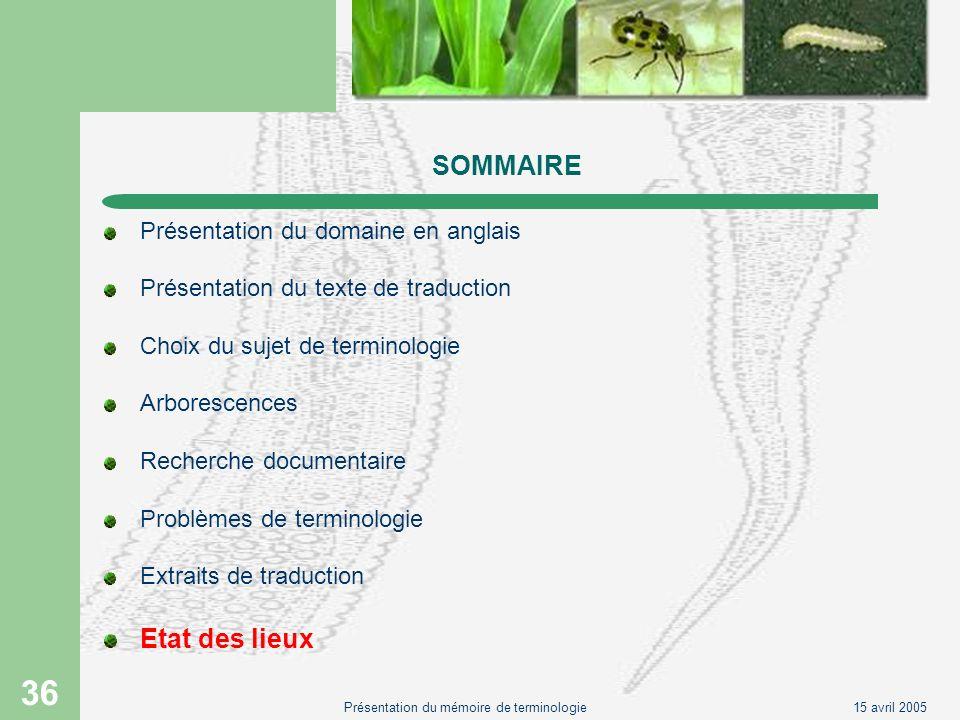 15 avril 2005Présentation du mémoire de terminologie 36 SOMMAIRE Présentation du domaine en anglais Présentation du texte de traduction Choix du sujet
