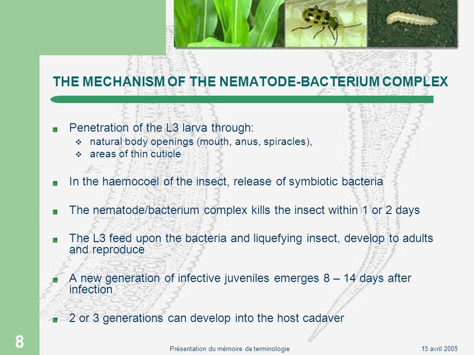 15 avril 2005Présentation du mémoire de terminologie 19 COMPLEXE NEMATO-BACTERIEN UTILISE EN LUTTE BIOLOGIQUE lutte biologique biopesticide nématode nématode parasite dinsecte nématode entomopathogène SteinernemaHeterorhabditis bactérie symbiotique insecte ravageur hôte XenorhabdusPhotorhabdus auxiliaire