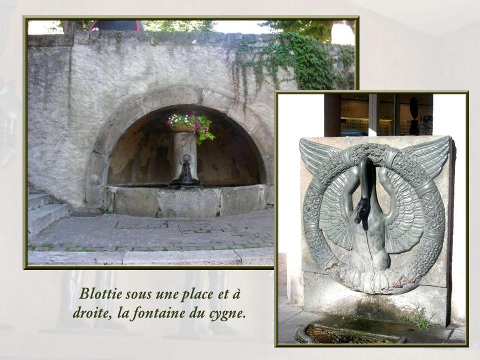Le cœur de la ville conserve ses petites rues et ses vieilles maisons, ainsi que de belles fontaines dont celle du cygne.