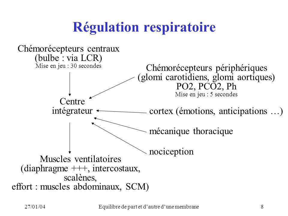 27/01/04Equilibre de part et dautre dune membrane8 Régulation respiratoire Chémorécepteurs centraux (bulbe : via LCR) Mise en jeu : 30 secondes Chémorécepteurs périphériques (glomi carotidiens, glomi aortiques) PO2, PCO2, Ph Mise en jeu : 5 secondes cortex (émotions, anticipations …) mécanique thoracique nociception Muscles ventilatoires (diaphragme +++, intercostaux, scalènes, effort : muscles abdominaux, SCM) Centre intégrateur