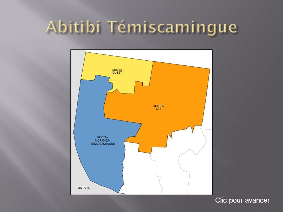 Au début du XXe siècle, la région de l Abitibi-Témiscamingue apparaissait comme une terre promise, un vaste territoire vierge qu il fallait coloniser.