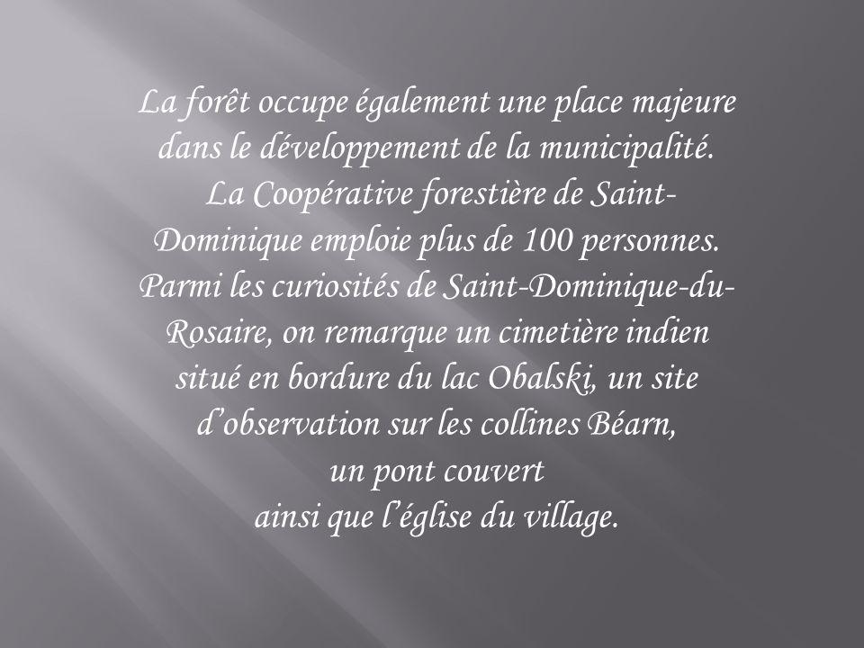 La forêt occupe également une place majeure dans le développement de la municipalité. La Coopérative forestière de Saint- Dominique emploie plus de 10