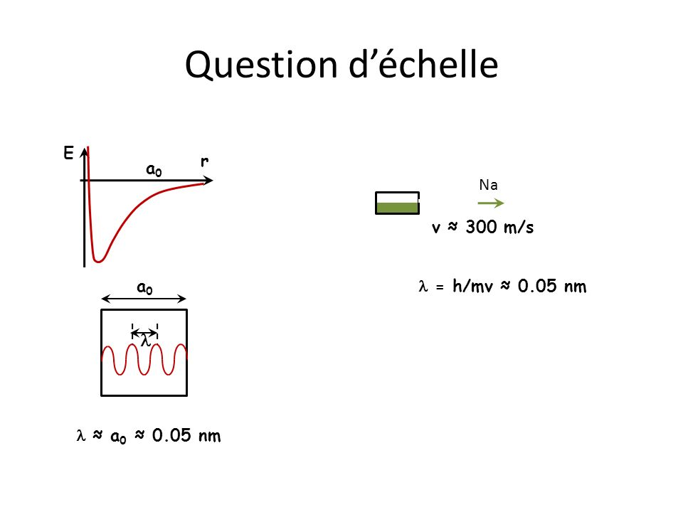 Question déchelle r E a0a0 a0a0 a 0 0.05 nm Na = h/mv 0.05 nm v 300 m/s