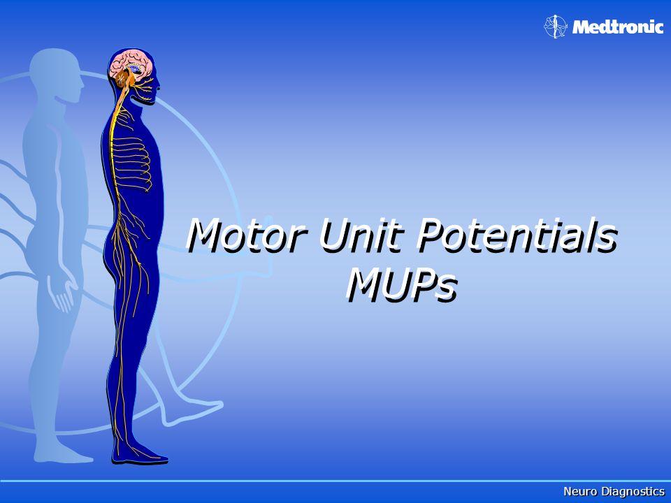 Neuro Diagnostics Motor Unit Potentials MUPs Motor Unit Potentials MUPs