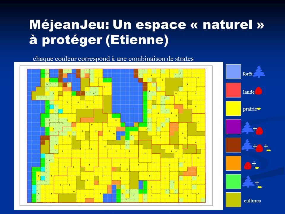 forêt landes prairie cultures ++ + + + MéjeanJeu: Un espace « naturel » à protéger (Etienne) chaque couleur correspond à une combinaison de strates