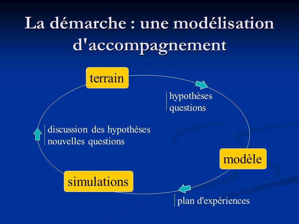…en interaction avec des processus de décision modèle terrain simulations Processus de décision