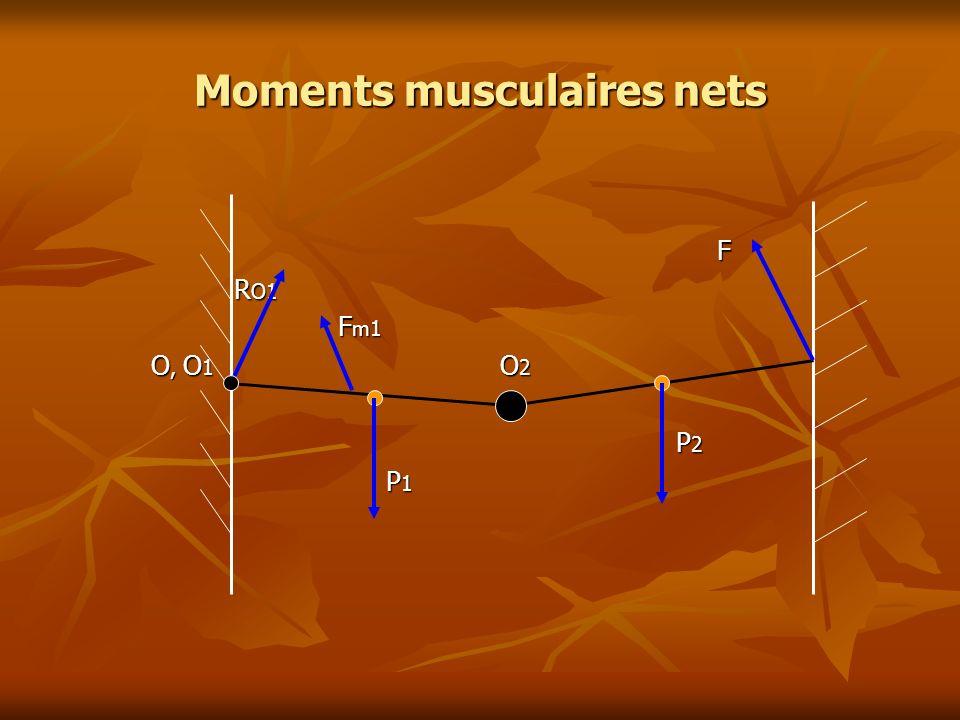 Moments musculaires nets F R O1 R O1 F m1 F m1 O, O 1 O 2 O, O 1 O 2 P 2 P 2 P 1 P 1