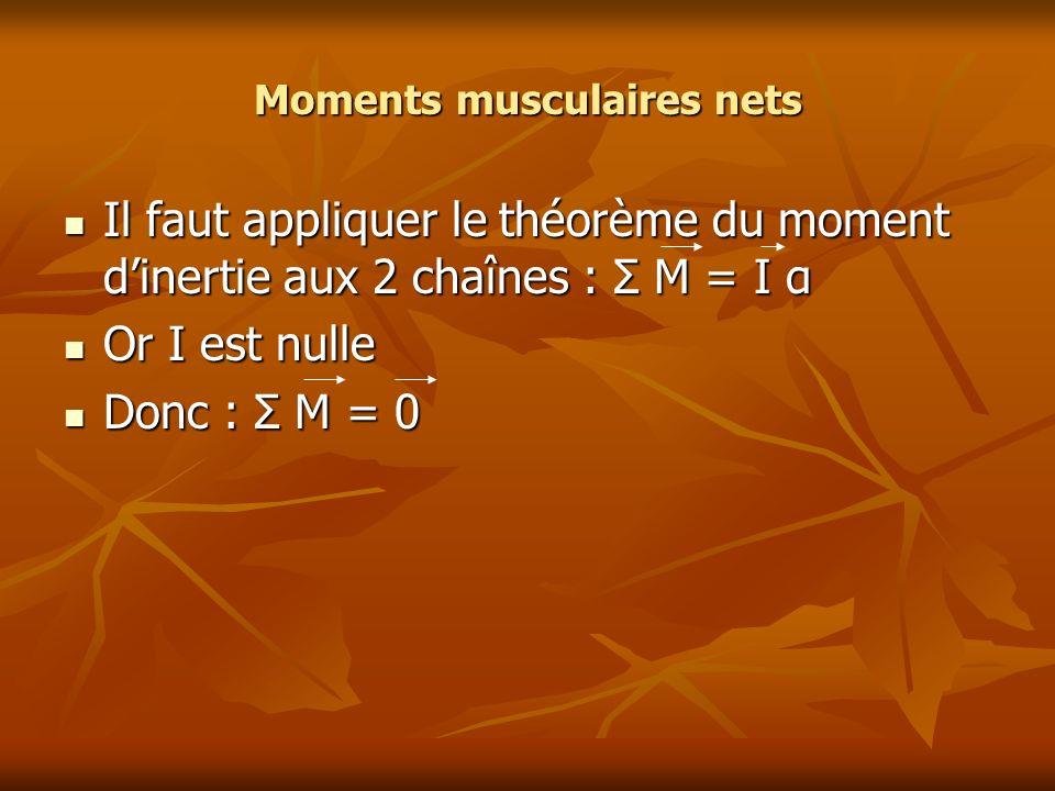 Moments musculaires nets Il faut appliquer le théorème du moment dinertie aux 2 chaînes : Σ M = I α Il faut appliquer le théorème du moment dinertie a