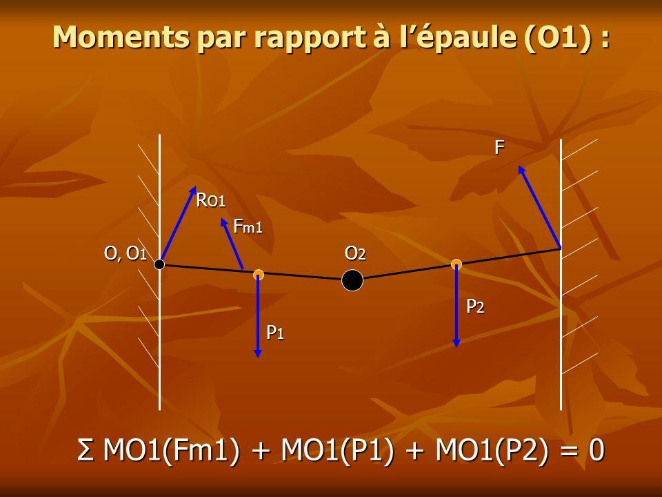 Moments par rapport à lépaule (O1) : F R O1 R O1 F m1 F m1 O, O 1 O 2 O, O 1 O 2 P 2 P 2 P 1 P 1 Σ MO1(Fm1) + MO1(P1) + MO1(P2) = 0