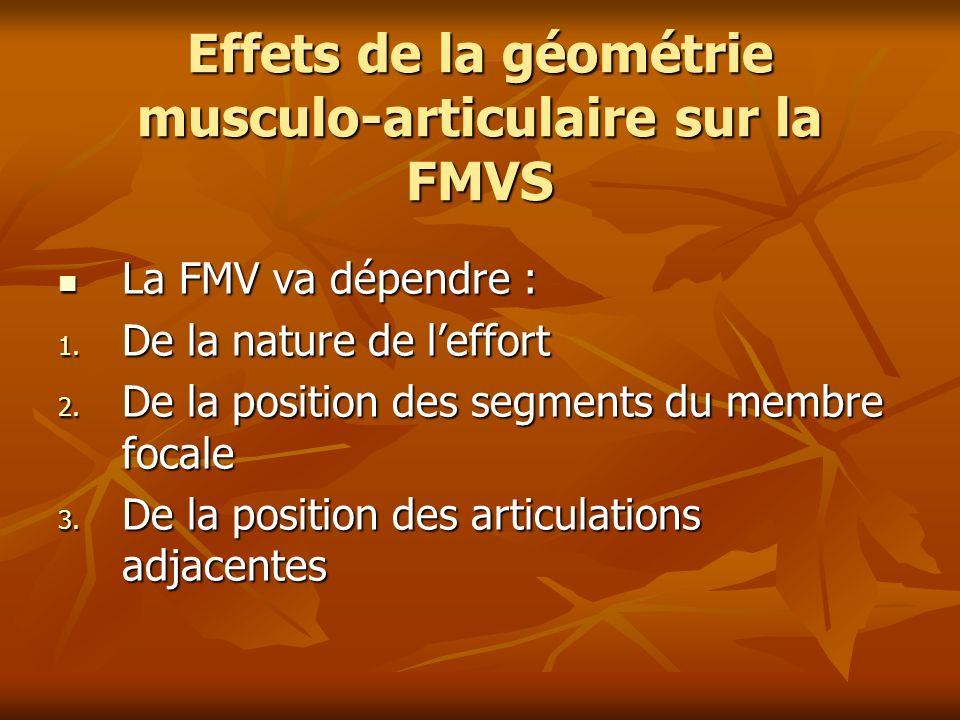 Effets de la géométrie musculo-articulaire sur la FMVS La FMV va dépendre : La FMV va dépendre : 1. De la nature de leffort 2. De la position des segm