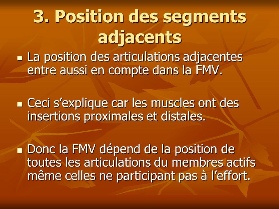 3. Position des segments adjacents La position des articulations adjacentes entre aussi en compte dans la FMV. La position des articulations adjacente