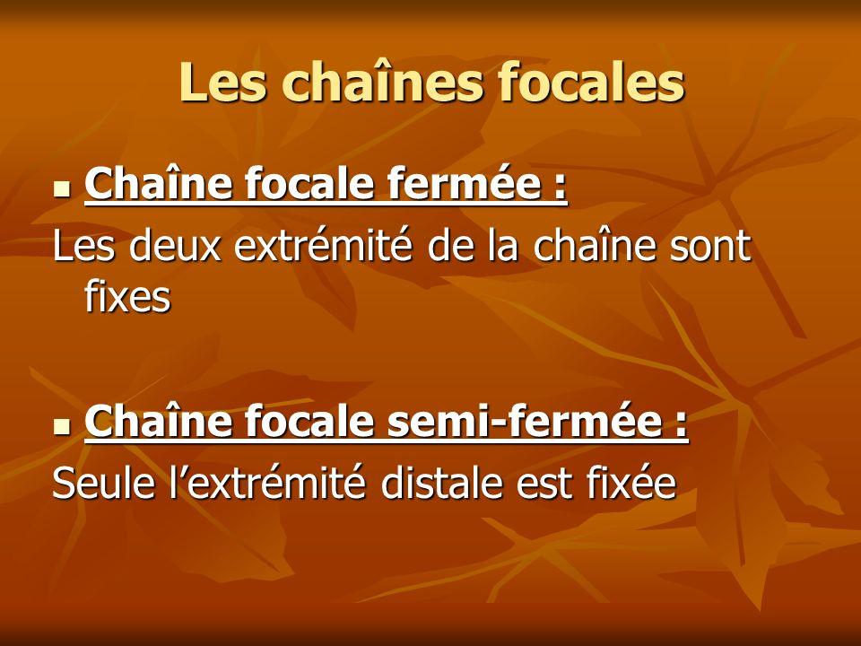 Les chaînes focales Chaîne focale fermée : Chaîne focale fermée : Les deux extrémité de la chaîne sont fixes Chaîne focale semi-fermée : Chaîne focale
