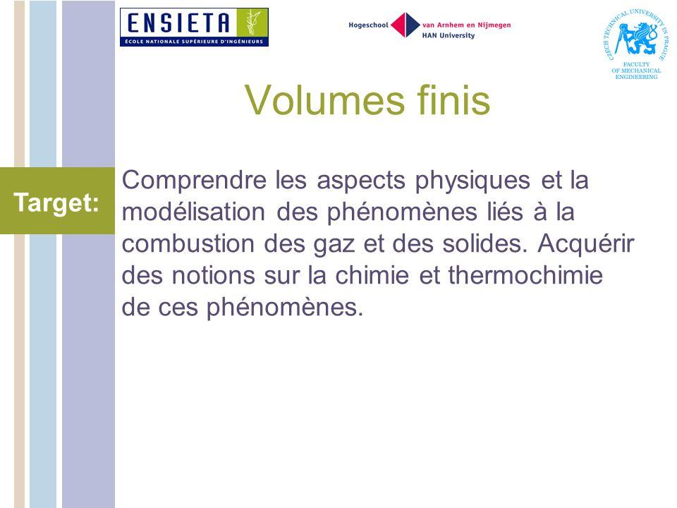 Volumes finis Comprendre les aspects physiques et la modélisation des phénomènes liés à la combustion des gaz et des solides.