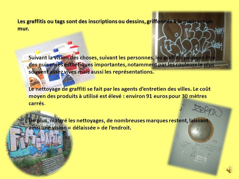 Les graffitis ou tags sont des inscriptions ou dessins, griffonnés à la main sur un mur. Suivant la vision des choses, suivant les personnes, les graf