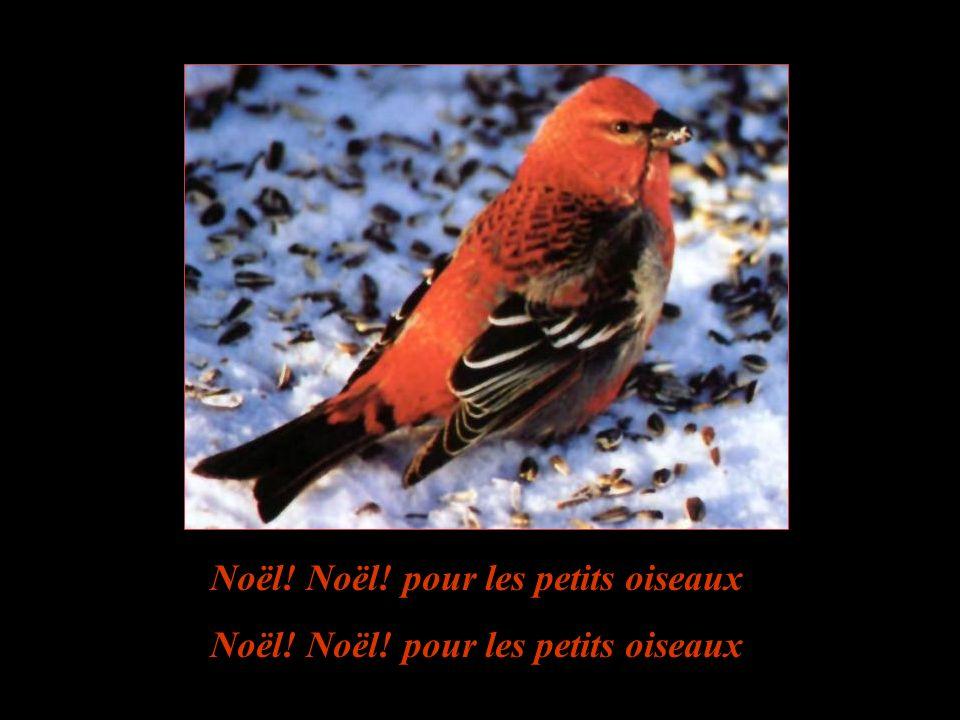 Il est minuit! et Jésus vient de naître Pour protéger les nids et les berceaux Le ciel est bleu! le printemps va renaître