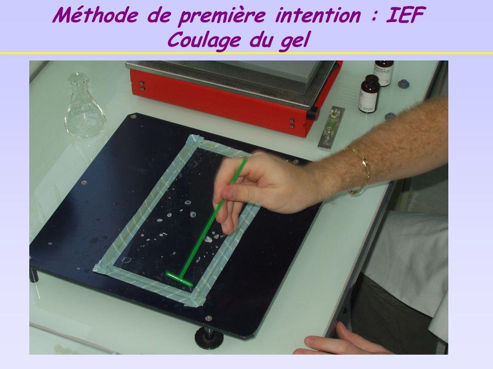 Méthode de première intention : IEF Coulage du gel