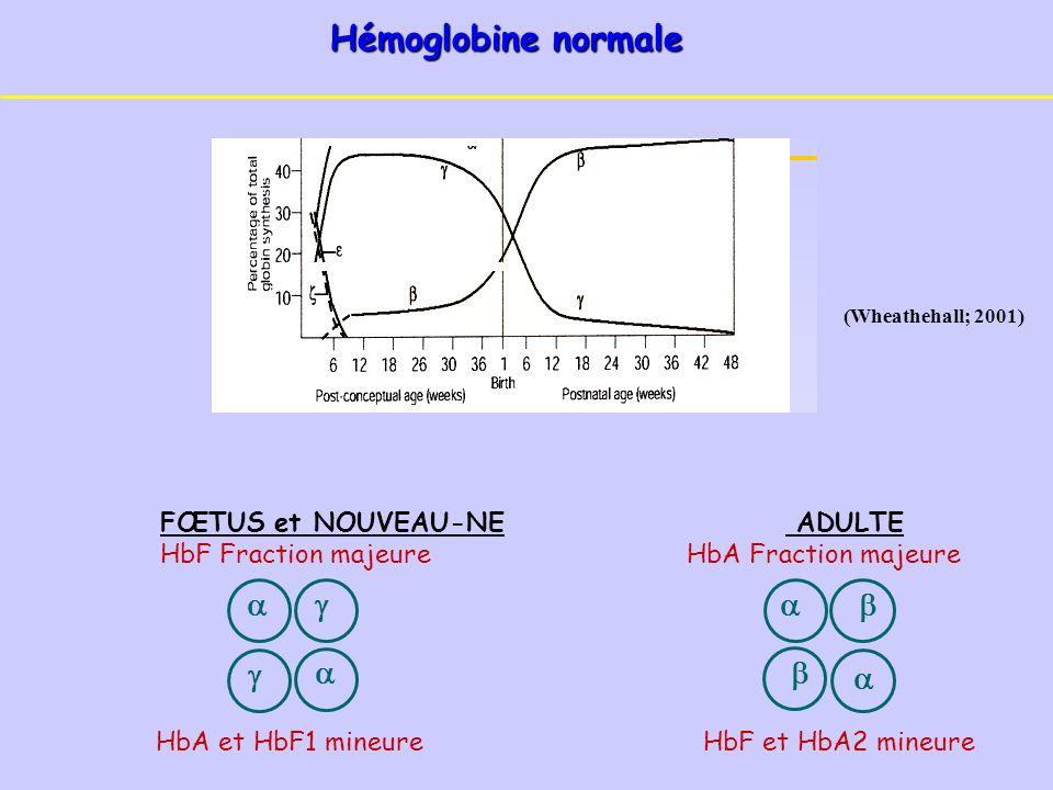 (Wheathehall; 2001) Hémoglobine normale FŒTUS et NOUVEAU-NE ADULTE HbF Fraction majeureHbA Fraction majeure HbA et HbF1 mineure HbF et HbA2 mineure