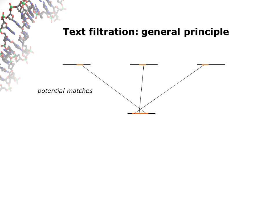 Text filtration: general principle lossless and lossy filters true match
