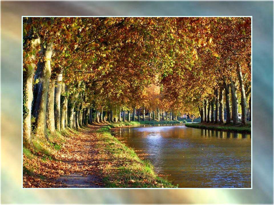 Bassin de Saint-Ferréol – 1667-1672 - 780 de longueur – 120 m de largeur à la base – La plus grande réserve deau destinée au Canal, sans laquelle il ne pourrait exister.