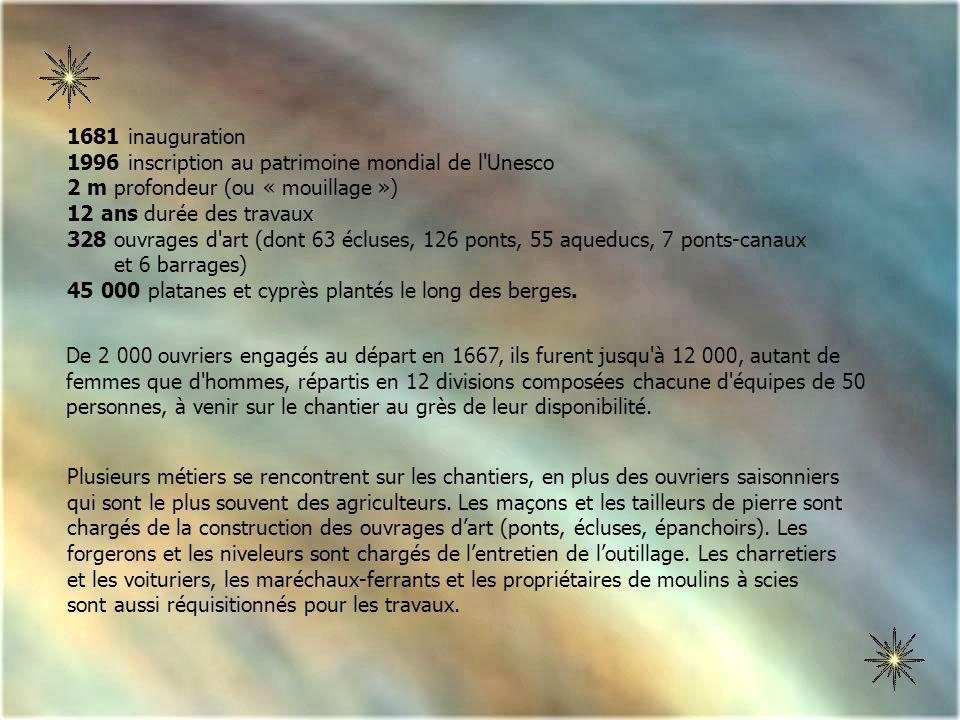 Les majestueux platanes du Canal du Midi .