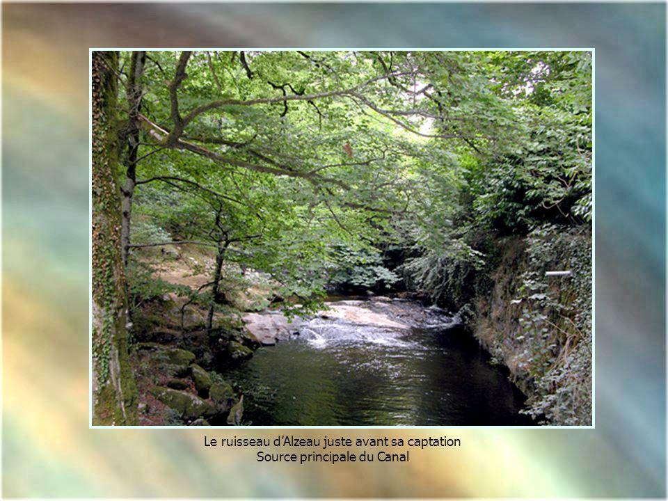 Le ruisseau dAlzeau juste avant sa captation Source principale du Canal