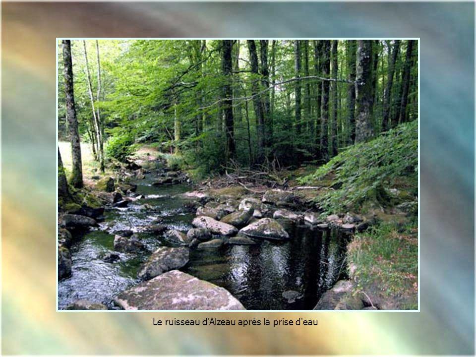 Le ruisseau d Alzeau après la prise d eau