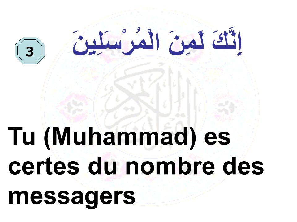 إِنَّكَ لَمِنَ الْمُرْسَلِينَ Tu (Muhammad) es certes du nombre des messagers 3