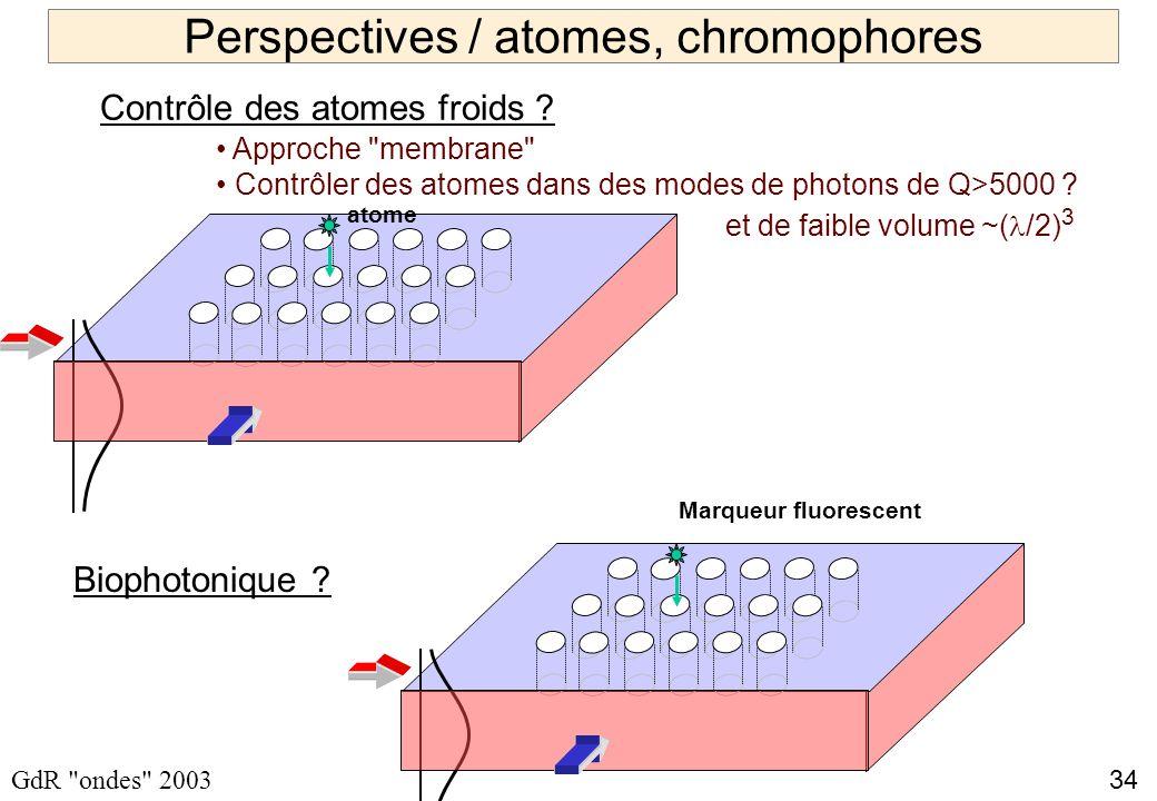 34 GdR ondes 2003 Perspectives / atomes, chromophores Approche membrane Contrôler des atomes dans des modes de photons de Q>5000 .
