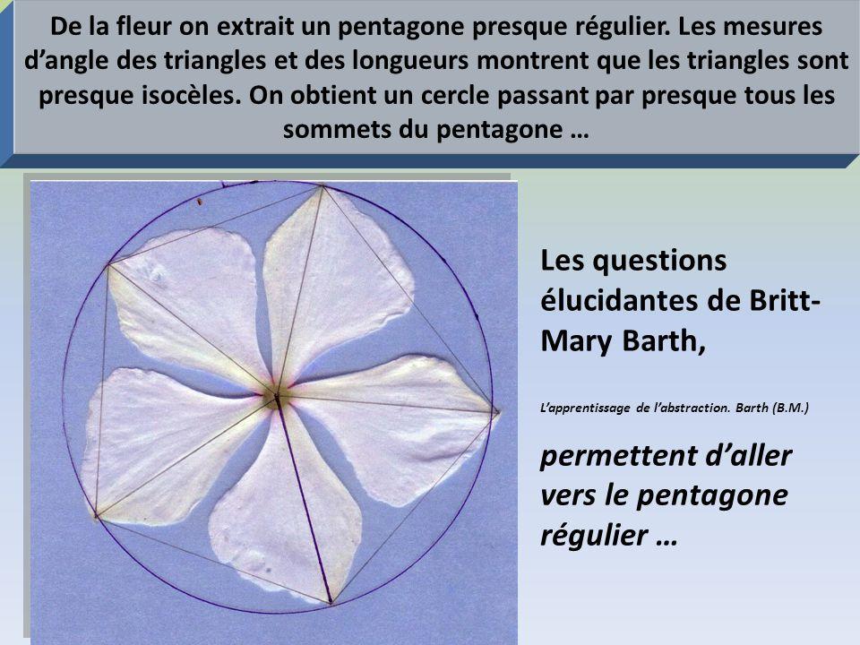De la fleur on extrait un pentagone presque régulier. Les mesures dangle des triangles et des longueurs montrent que les triangles sont presque isocèl