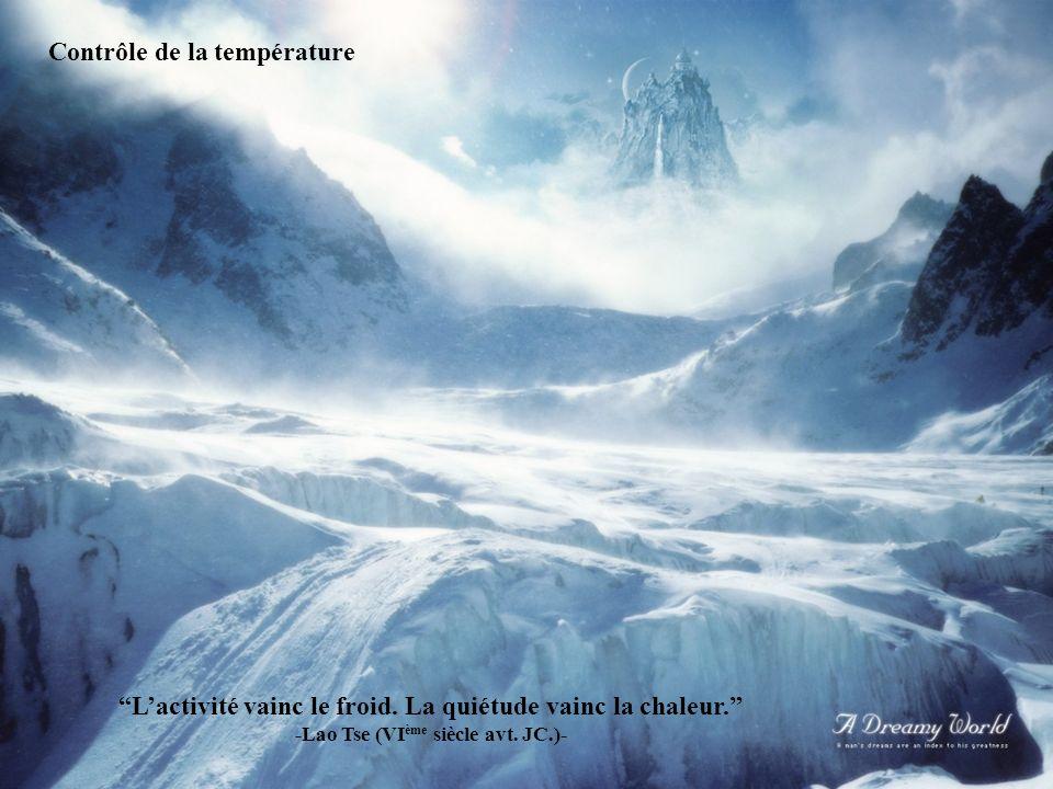 Programme du jour : expirer, inspirer, expirer. -Bouddha- UNE JOURNEE SANNONCE