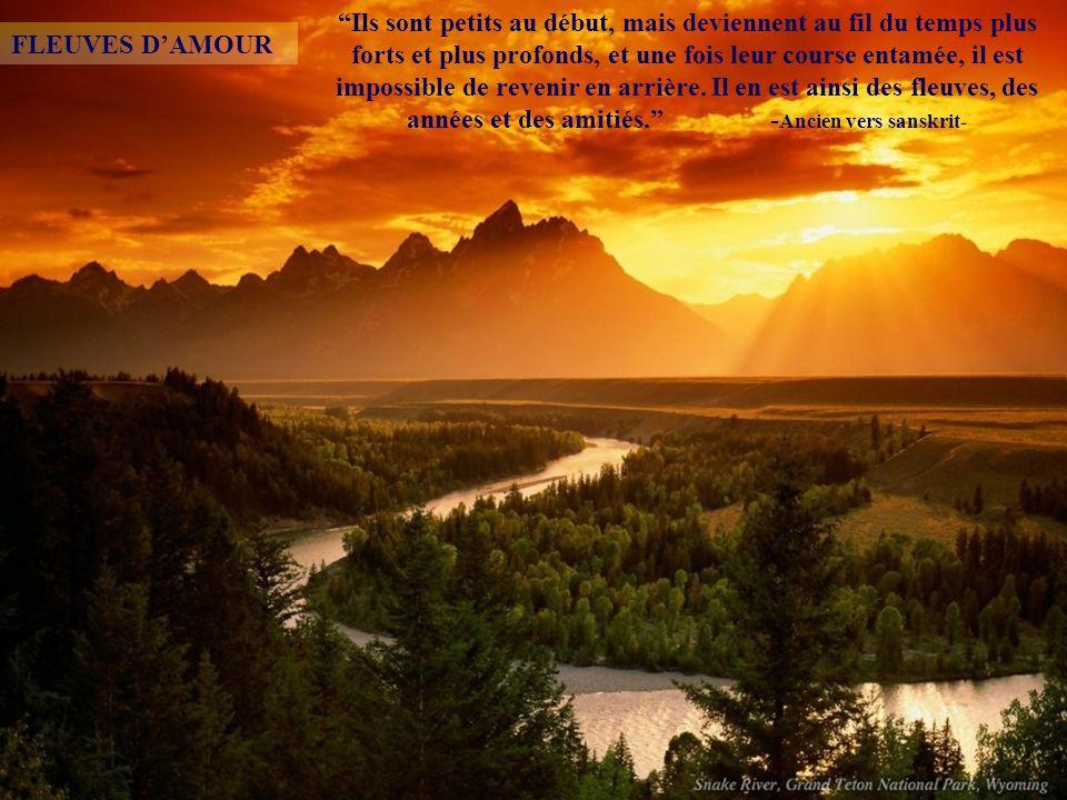 Simplement beau Cest sans artifice que la beauté est la plus étincelante. -Saint Jérôme