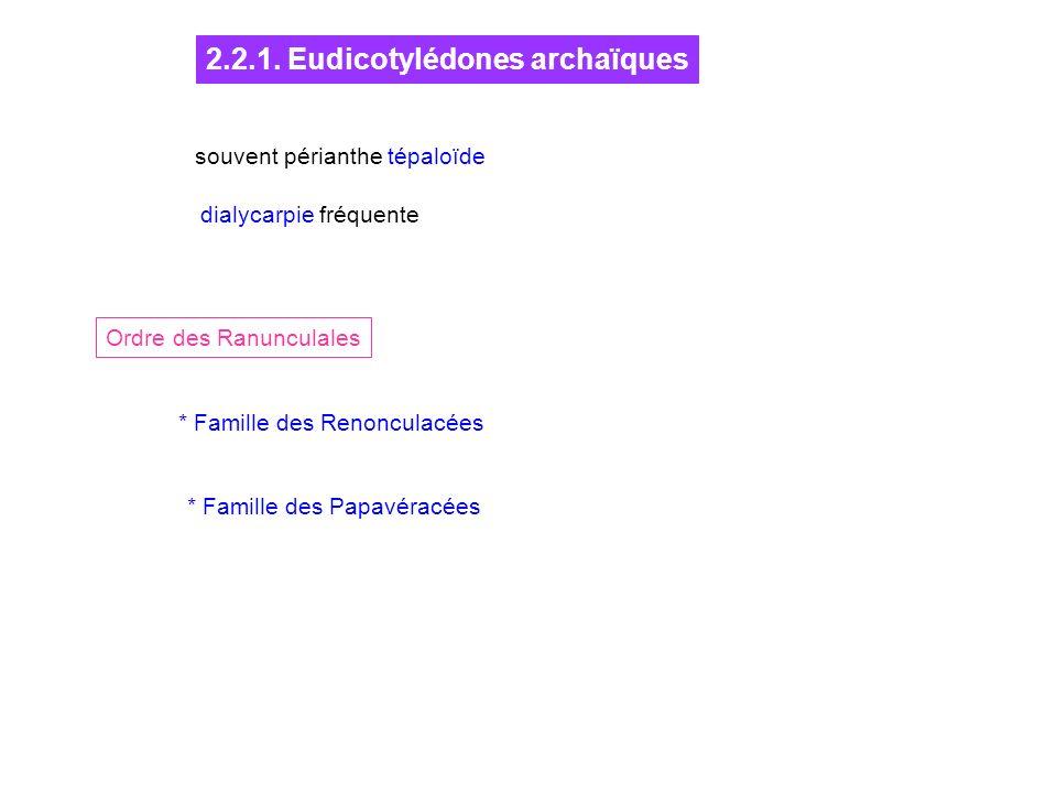 2.2.1. Eudicotylédones archaïques Ordre des Ranunculales * Famille des Renonculacées * Famille des Papavéracées souvent périanthe tépaloïde dialycarpi