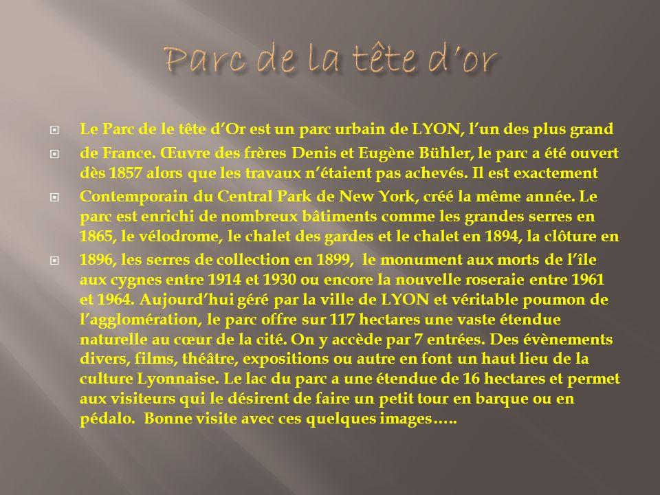Le Parc de le tête dOr est un parc urbain de LYON, lun des plus grand de France.