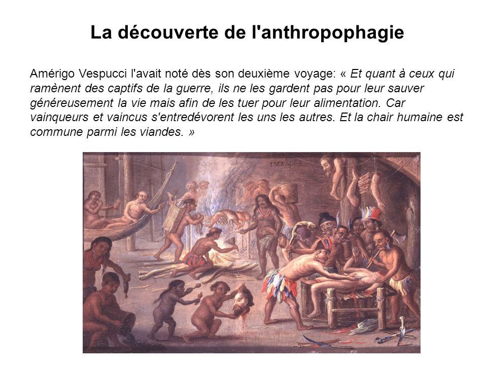 La découverte de l anthropophagie Amérigo Vespucci l avait noté dès son deuxième voyage: « Et quant à ceux qui ramènent des captifs de la guerre, ils ne les gardent pas pour leur sauver généreusement la vie mais afin de les tuer pour leur alimentation.