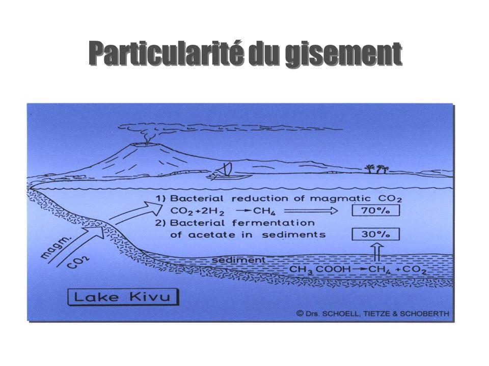 Particularité du gisement Lorigine du gaz méthane nest pas entièrement connue Lhypothèse la plus vraisemblable est que le méthane proviendrait pour un