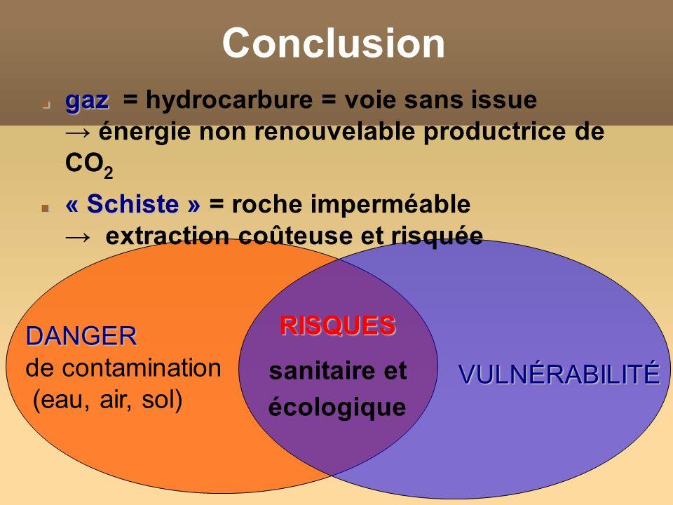 ConclusionRISQUES sanitaire et écologique VULNÉRABILITÉ DANGER de contamination (eau, air, sol) gaz gaz = hydrocarbure = voie sans issue énergie non r