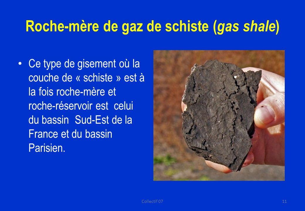 Roche-mère de gaz de schiste ( gas shale ) Ce type de gisement où la couche de « schiste » est à la fois roche-mère et roche-réservoir est celui du bassin Sud-Est de la France et du bassin Parisien.