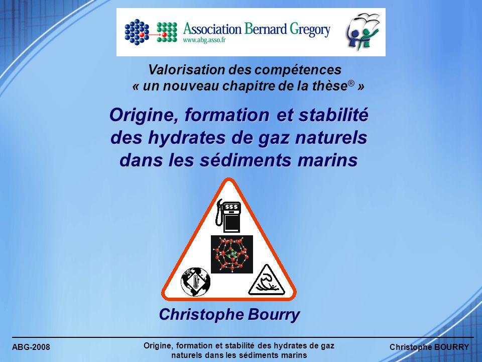 ABG-2008 Origine, formation et stabilité des hydrates de gaz naturels dans les sédiments marins Christophe BOURRY Valorisation des compétences « un no