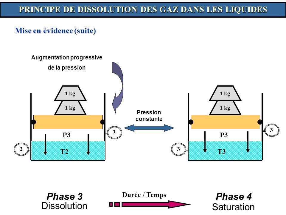 Mise en évidence (suite) Pression constante Augmentation progressive de la pression Phase 3 Dissolution Phase 4 Saturation Durée / Temps 3 3 P3 T3 1 k