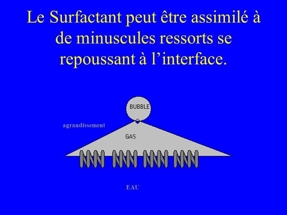 Le Surfactant peut être assimilé à de minuscules ressorts se repoussant à linterface. agrandissement EAU